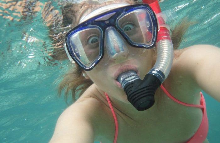galapagos snorkeling on moondance trip