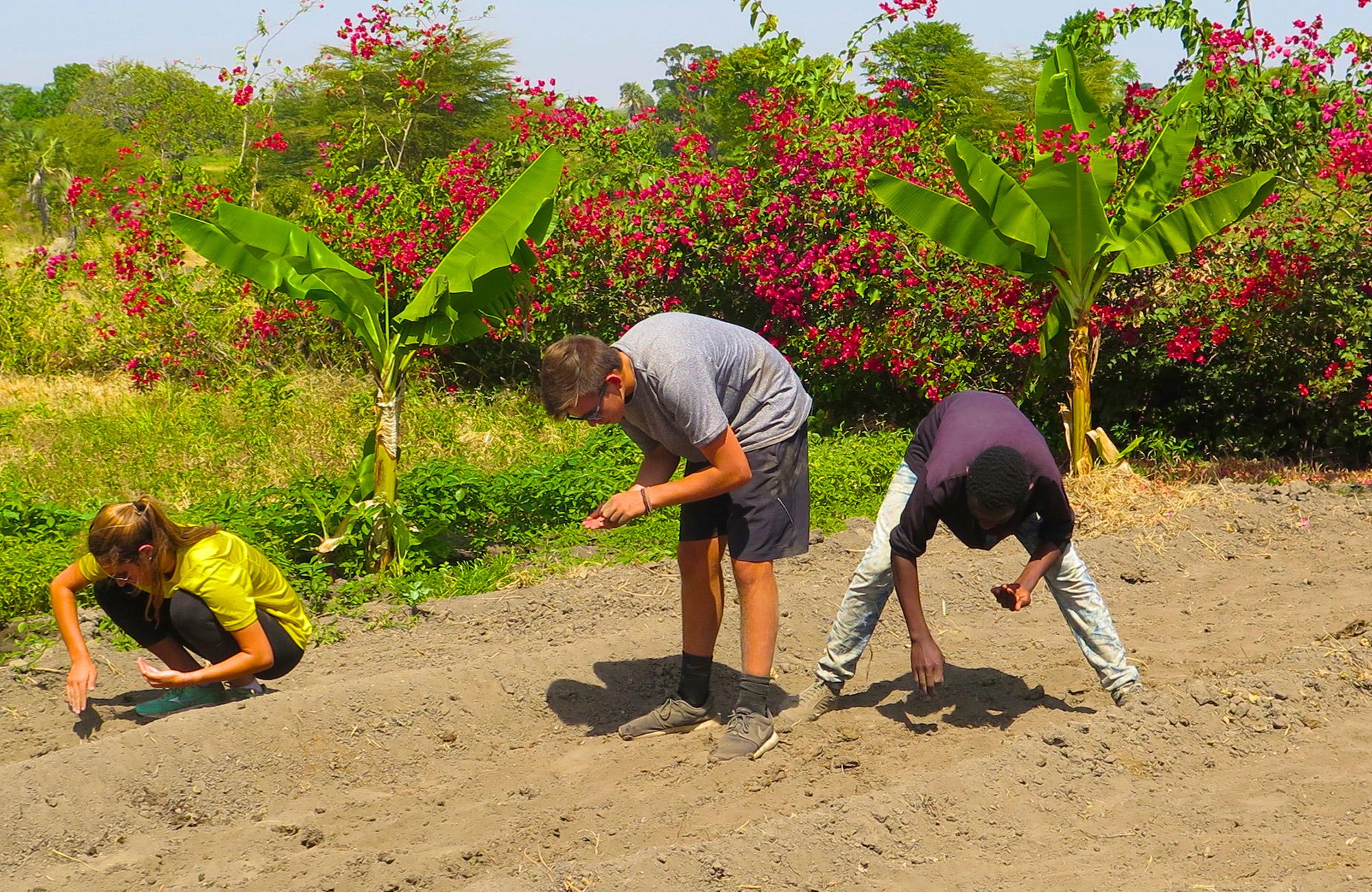 kilimanjaro community service project with moondance