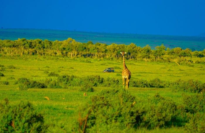 Kenya + Zanzibar